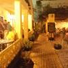 Garden at Night
