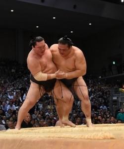 Sumo Overnight