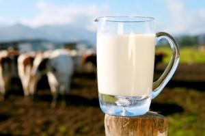 Al Anaam Fresh Dairy Bahrain