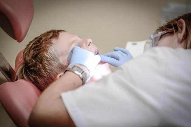 Shinagawa Dental Pediatric Dentist