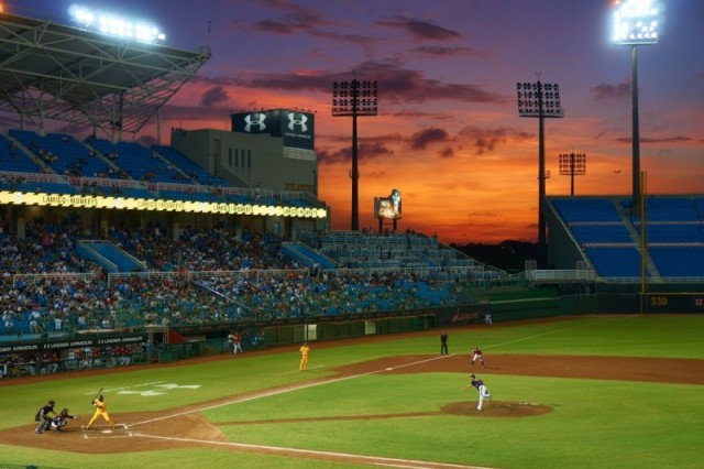 Pro Baseball Day Game