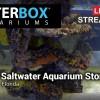 BioReef Saltwater Aquarium Store in Jacksonville Florida - Waterbox Aquariums